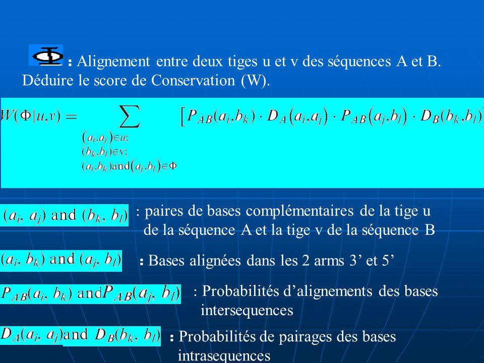 B) Étape ditération : 1.Un block est une paire de tiges alignées : On peut générer une série dalignement entre deux tiges en glissant une tige (séquence A) le long de lautre (séquence B).