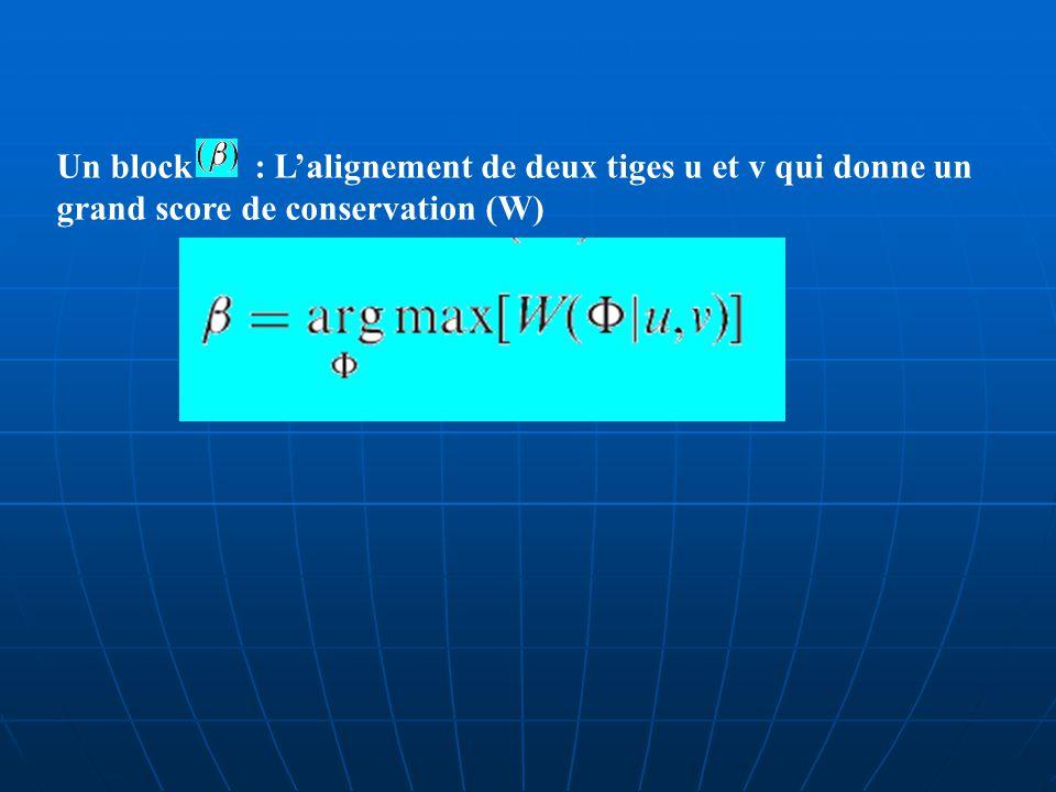 : Alignement entre deux tiges u et v des séquences A et B.