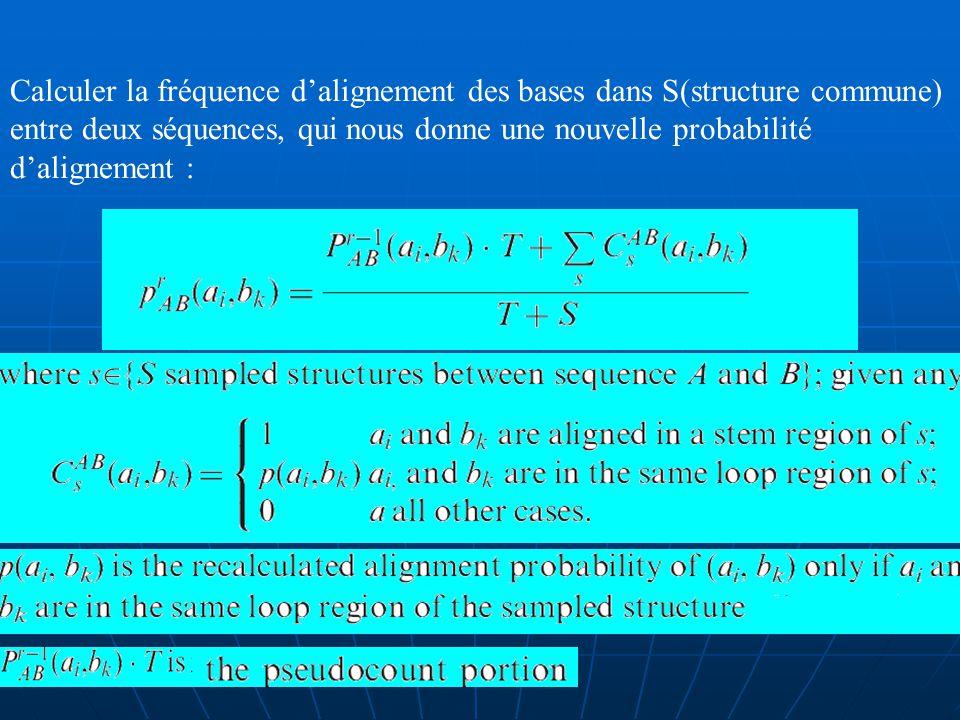 4. Mise à jour itératives des probabilités dalignements et de pairages des bases: Calculer la fréquence dapparition des paires de bases dans S (struct