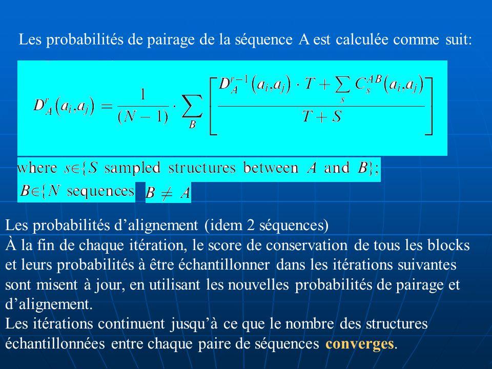 D) De deux séquences dARN à plusieurs: Étape dinitialisation (idem) Étape ditération : Échantillon de la structure commune entre toutes les paires de séquences.