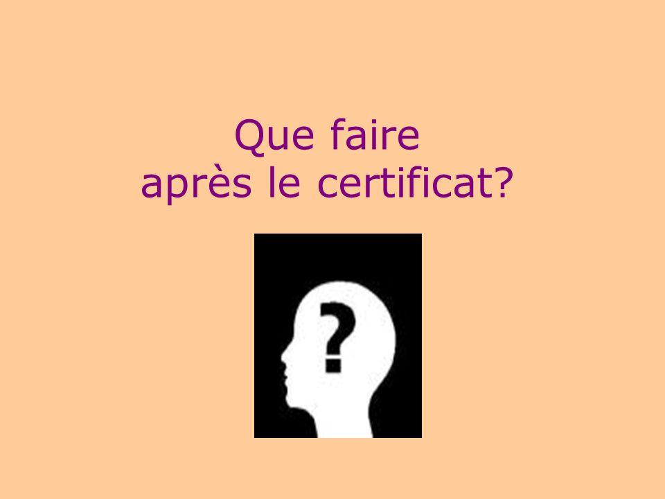 16 Le certificat est-il suffisant sur le marché du travail ? NON mais… Élément positif dans la recherche demploi Aide les étudiants dans leur cheminem