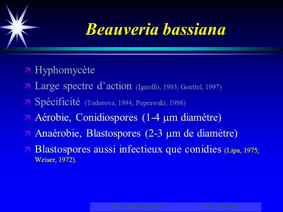 Auteur: Mathias Kouassi EDU7492 UQAM Beauveria bassiana ä ä Hyphomycète ä ä Large spectre daction (Ignoffo, 1993; Goettel, 1997) ä ä Spécificité (Todo
