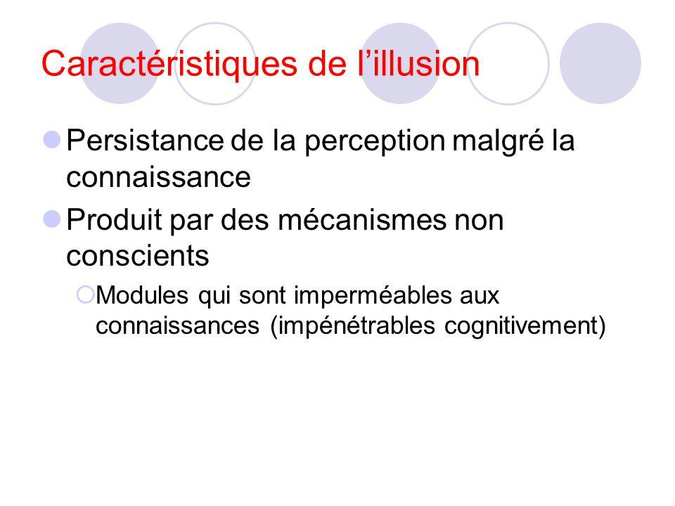illusions perceptives Müller-Lyer Utilisation du flou pour évaluer la distance: jour de brume vs jour de soleil.