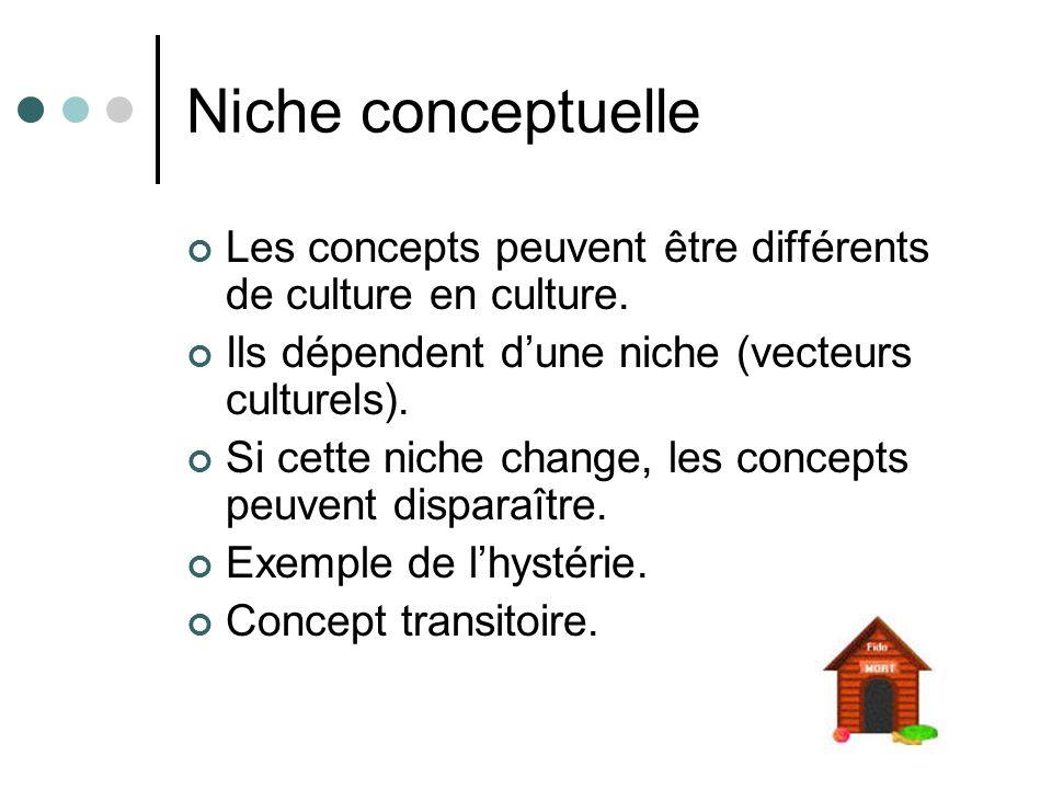 Niche conceptuelle Les concepts peuvent être différents de culture en culture. Ils dépendent dune niche (vecteurs culturels). Si cette niche change, l