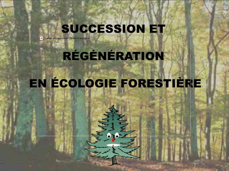 SUCCESSION ET RÉGÉNÉRATION EN ÉCOLOGIE FORESTIÈRE