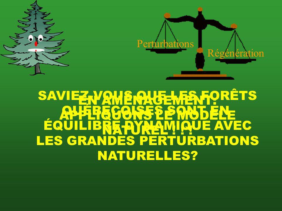 5) LES PLUIES ACIDES SO 2 NO H 2 SO 4 H 2 NO 3 Empêche la germination Affecte la surface cireuse des feuilles, la protection Solubilise Al et affecte