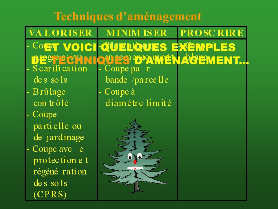 QUELQUES PRINCIPES DAMÉNAGEMENT DURABLE: QUELQUES PRINCIPES DAMÉNAGEMENT DURABLE: 1) Préserver des forêts naturelles pour la recherche 2) Favoriser la