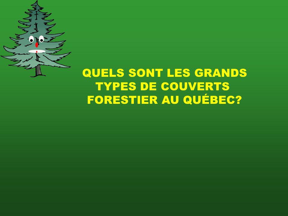 QUELS SONT LES GRANDS TYPES DE COUVERTS FORESTIER AU QUÉBEC?