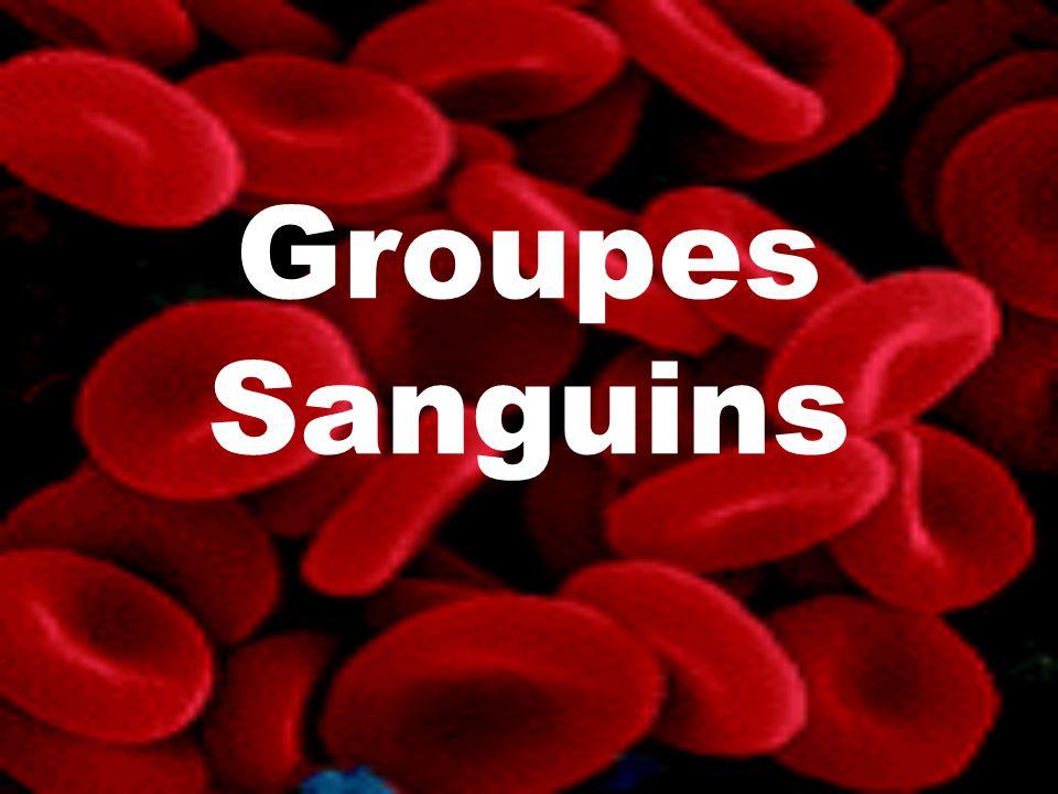 Groupes Sanguins