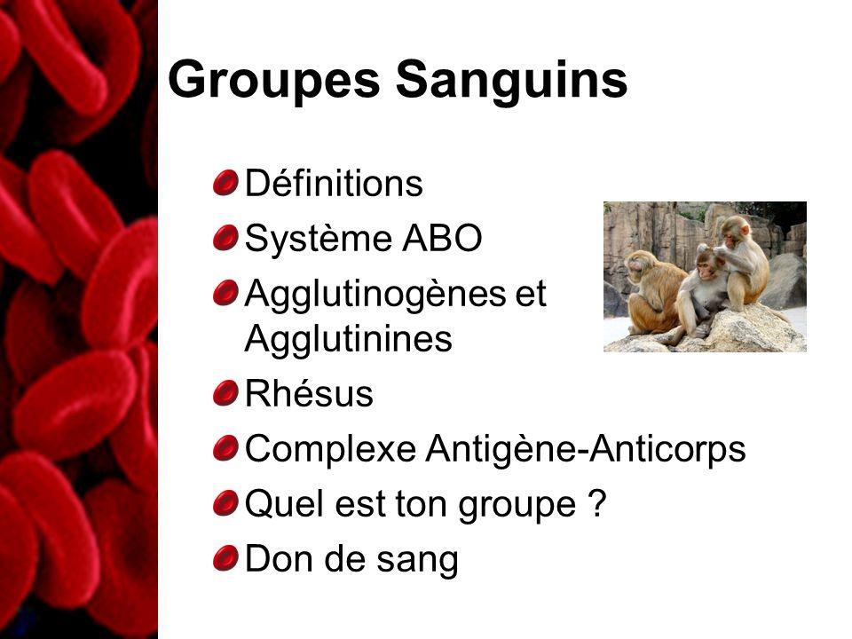 Définitions Système ABO Agglutinogènes et Agglutinines Rhésus Complexe Antigène-Anticorps Quel est ton groupe ? Don de sang