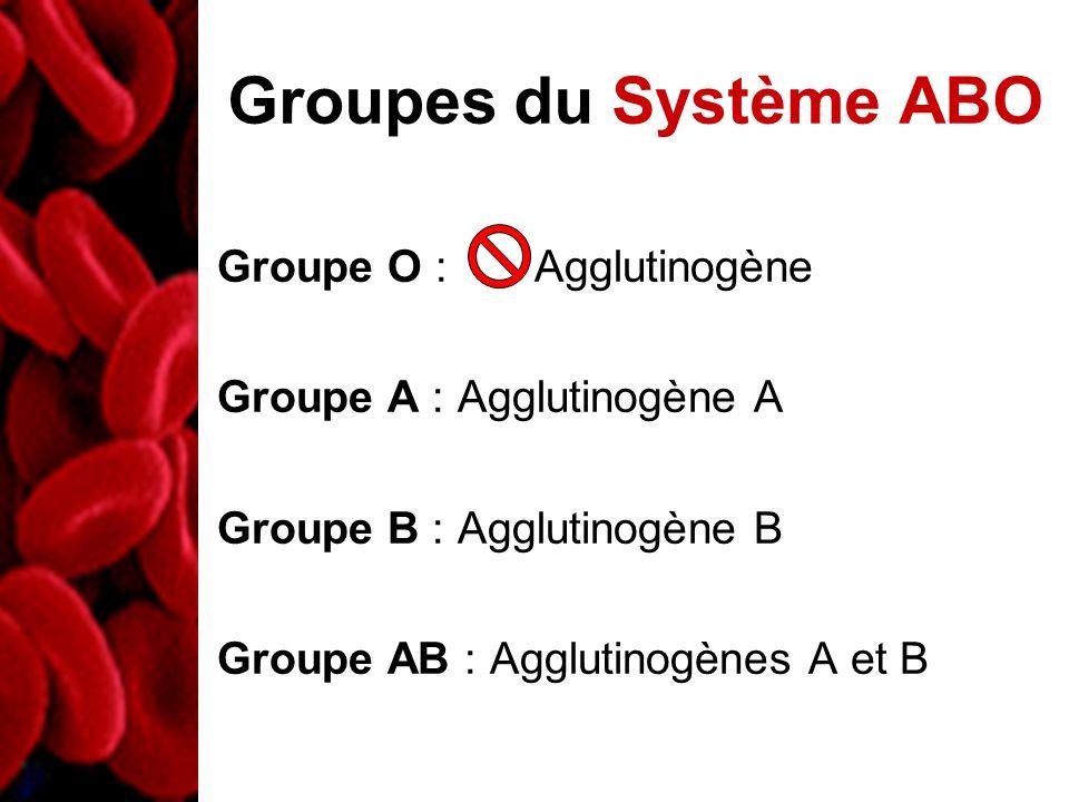 Groupes du Système ABO Groupe O : Agglutinogène Groupe A : Agglutinogène A Groupe B : Agglutinogène B Groupe AB : Agglutinogènes A et B