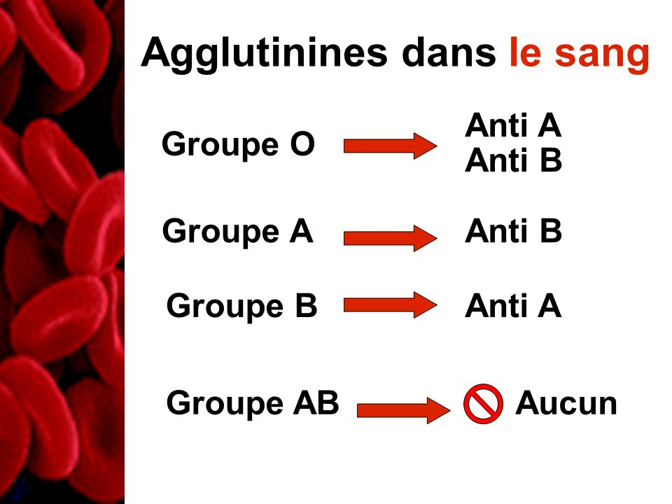 Agglutinines dans le sang Groupe O Groupe A Groupe B Groupe AB Anti A Anti B Anti A Aucun