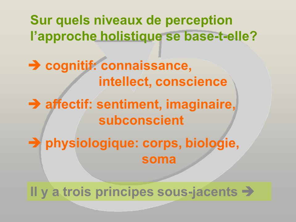 Comment comprendre nos comportements par le holisme.