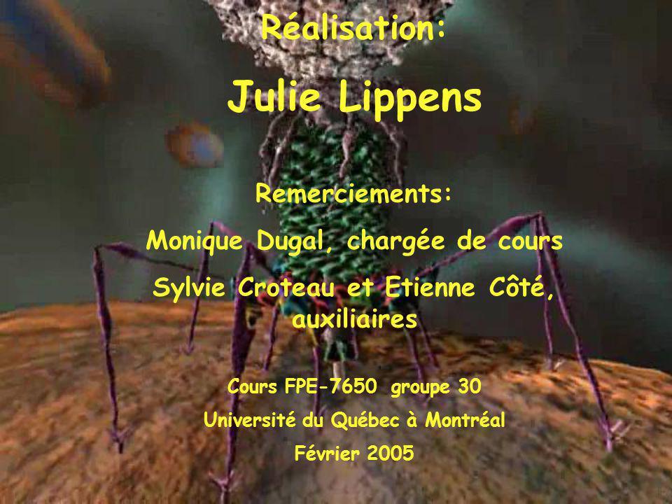 Réalisation: Julie Lippens Remerciements: Monique Dugal, chargée de cours Sylvie Croteau et Etienne Côté, auxiliaires Cours FPE-7650 groupe 30 Univers