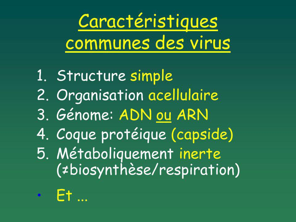 1.Structure simple 2.Organisation acellulaire 3.Génome: ADN ou ARN 4.Coque protéique (capside) 5.Métaboliquement inerte (biosynthèse/respiration) Et..