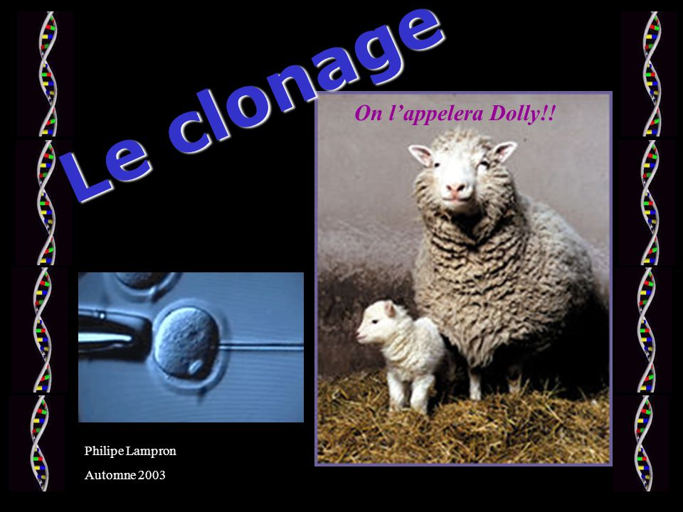 Le clonage On lappelera Dolly!! Philipe Lampron Automne 2003