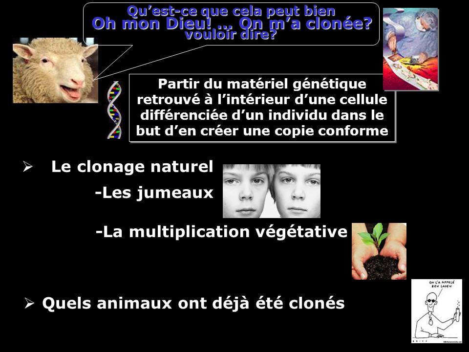 Oh mon Dieu! … On ma clonée? Le clonage naturel -Les jumeaux -La multiplication végétative Partir du matériel génétique retrouvé à lintérieur dune cel