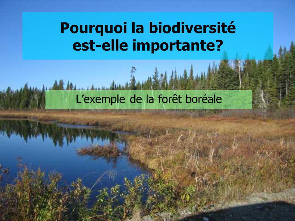 1 Pourquoi la biodiversité est-elle importante? Lexemple de la forêt boréale
