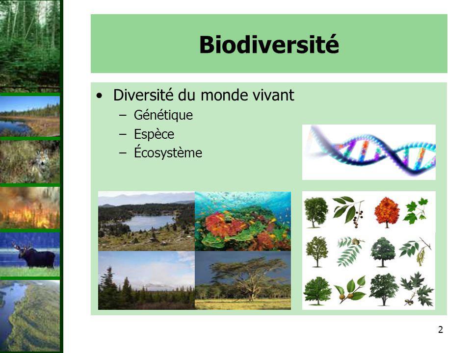 2 Biodiversité Diversité du monde vivant –Génétique –Espèce –Écosystème