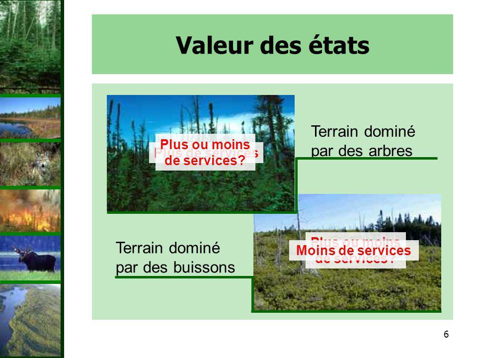7 Haute biodiversité Perturbation!!!