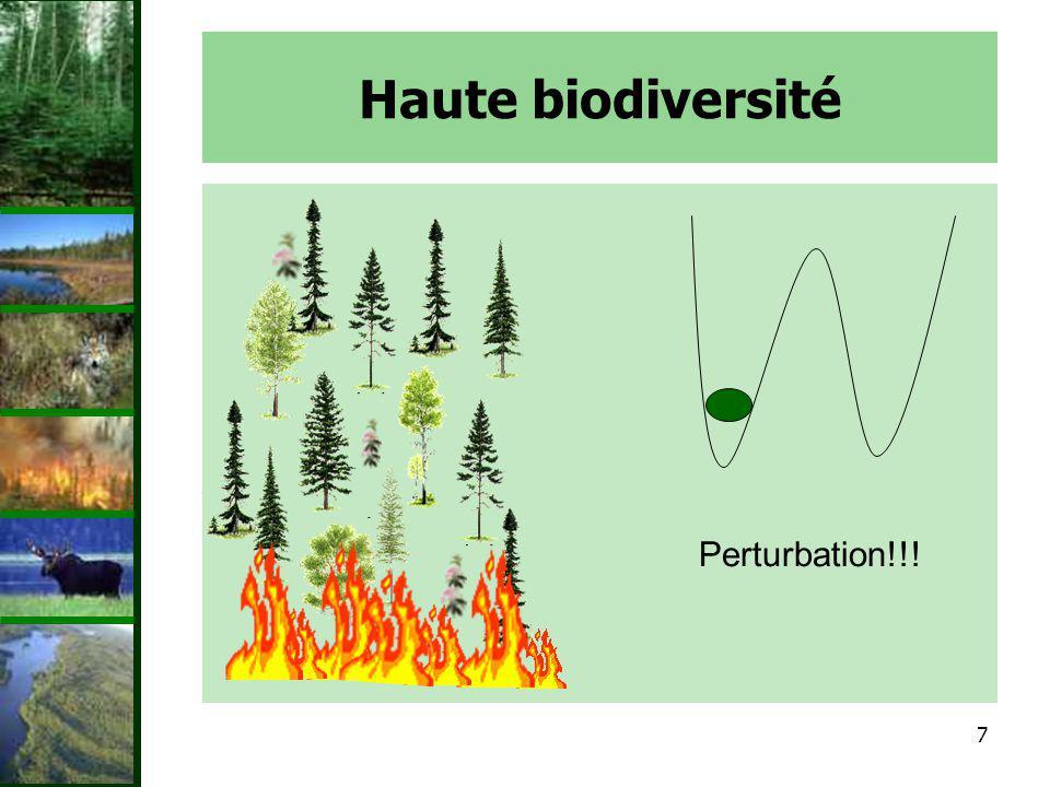 8 Haute biodiversité Grande biodiversité = plus doptions –Résistance au feu Graines Écorce Racines –Certaines espèces darbres survivent et empêchent linvasion par les arbustes