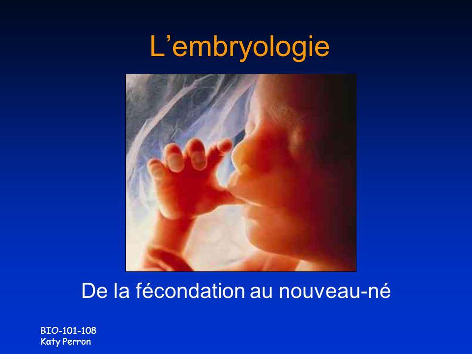 BIO-101-108 Katy Perron Lembryologie De la fécondation au nouveau-né