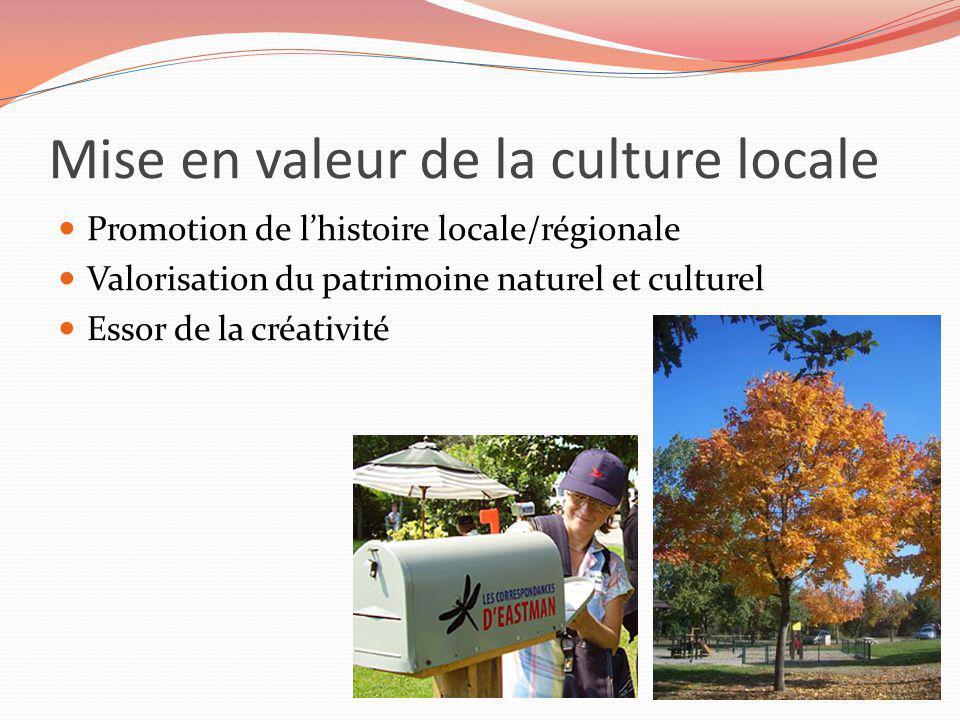 Mise en valeur de la culture locale Promotion de lhistoire locale/régionale Valorisation du patrimoine naturel et culturel Essor de la créativité