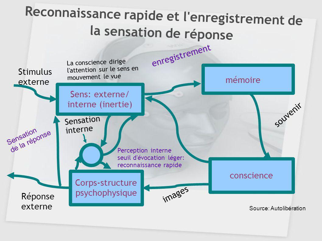 Reconnaissance rapide et l'enregistrement de la sensation de réponse conscience Sens: externe/ interne (inertie) Corps-structure psychophysique mémoir