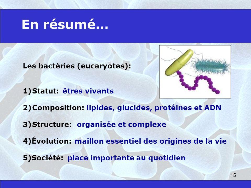 15 Les bactéries (eucaryotes): 1)Statut: 2)Composition: 3)Structure: 4)Évolution: 5)Société: En résumé… êtres vivants lipides, glucides, protéines et