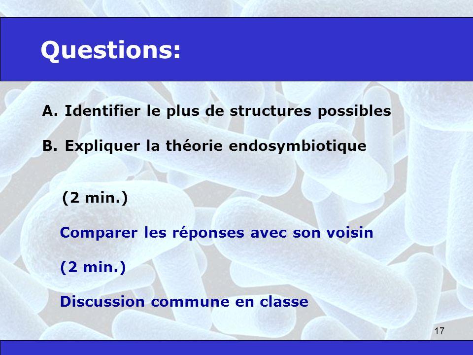 17 Questions: A. Identifier le plus de structures possibles B. Expliquer la théorie endosymbiotique (2 min.) Comparer les réponses avec son voisin (2