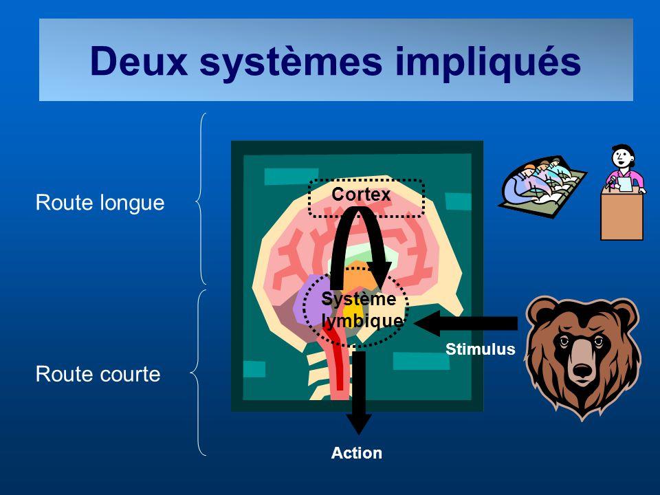 Deux systèmes impliqués Système lymbique Action Route courte Route longue Système lymbique Cortex Stimulus