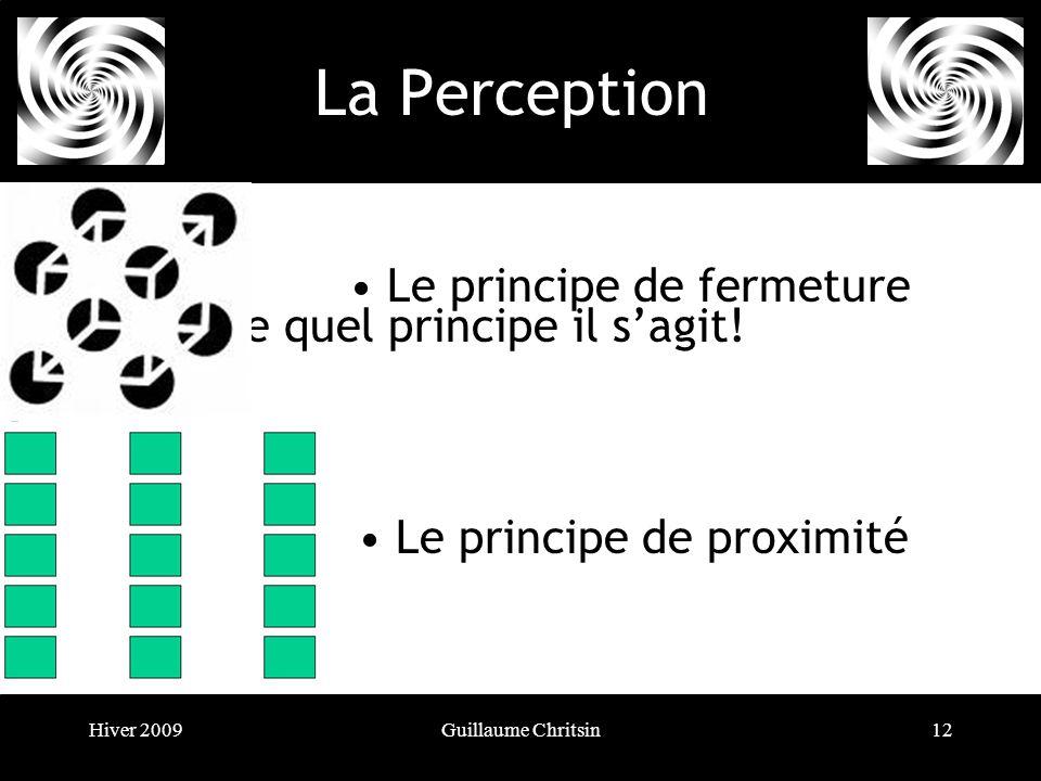 Hiver 2009Guillaume Chritsin12 La Perception Révision: Trouvez de quel principe il sagit.