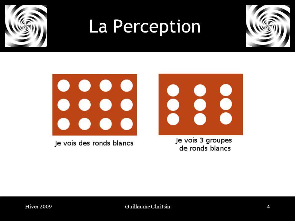 Hiver 2009Guillaume Chritsin15 La Perception
