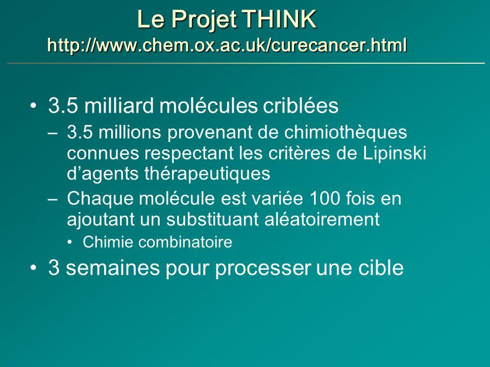 Le Projet THINK http://www.chem.ox.ac.uk/curecancer.html 3.5 milliard molécules criblées –3.5 millions provenant de chimiothèques connues respectant les critères de Lipinski dagents thérapeutiques –Chaque molécule est variée 100 fois en ajoutant un substituant aléatoirement Chimie combinatoire 3 semaines pour processer une cible
