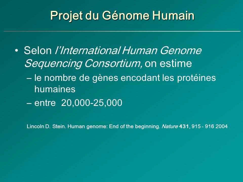 Projet du Génome Humain Selon lInternational Human Genome Sequencing Consortium, on estime –le nombre de gènes encodant les protéines humaines –entre 20,000-25,000 Lincoln D.