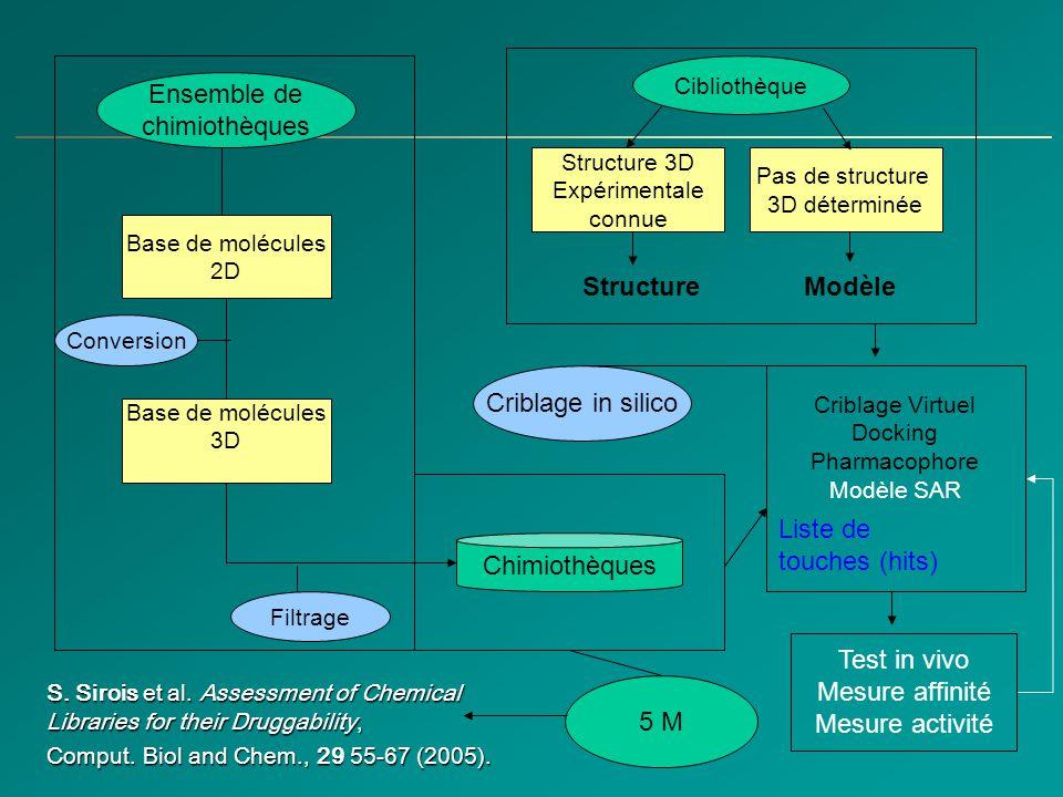Modélisation et Superposition des Structures 3D Modélisation 3D de SARS M Pro à partir de HCoV –PDB: 1P9S Expérimentale –PDB: 1UJ1 RMS = 1.4 Å