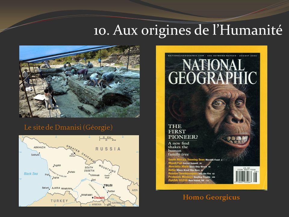 10. Aux origines de lHumanité Le site de Dmanisi (Géorgie) Homo Georgicus