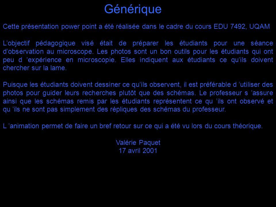Générique Cette présentation power point a été réalisée dans le cadre du cours EDU 7492, UQAM Lobjectif pédagogique visé était de préparer les étudian