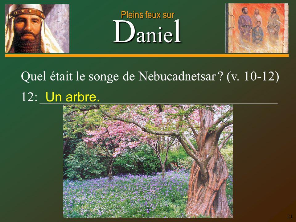 D anie l Pleins feux sur 21 12: ____________________________________ Quel était le songe de Nebucadnetsar ? (v. 10-12) Un arbre.