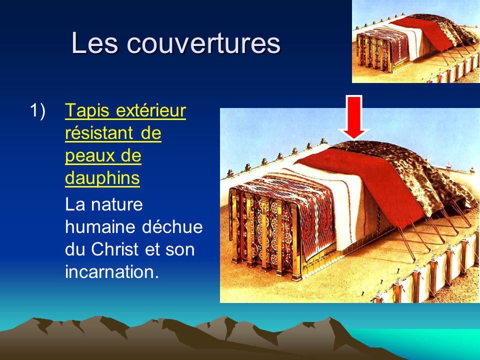 Les couvertures 1)Tapis extérieur résistant de peaux de dauphins La nature humaine déchue du Christ et son incarnation.