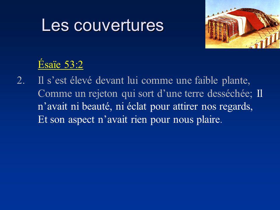 Les couvertures Ésaïe 53:2 2.Il sest élevé devant lui comme une faible plante, Comme un rejeton qui sort dune terre desséchée; Il navait ni beauté, ni éclat pour attirer nos regards, Et son aspect navait rien pour nous plaire.