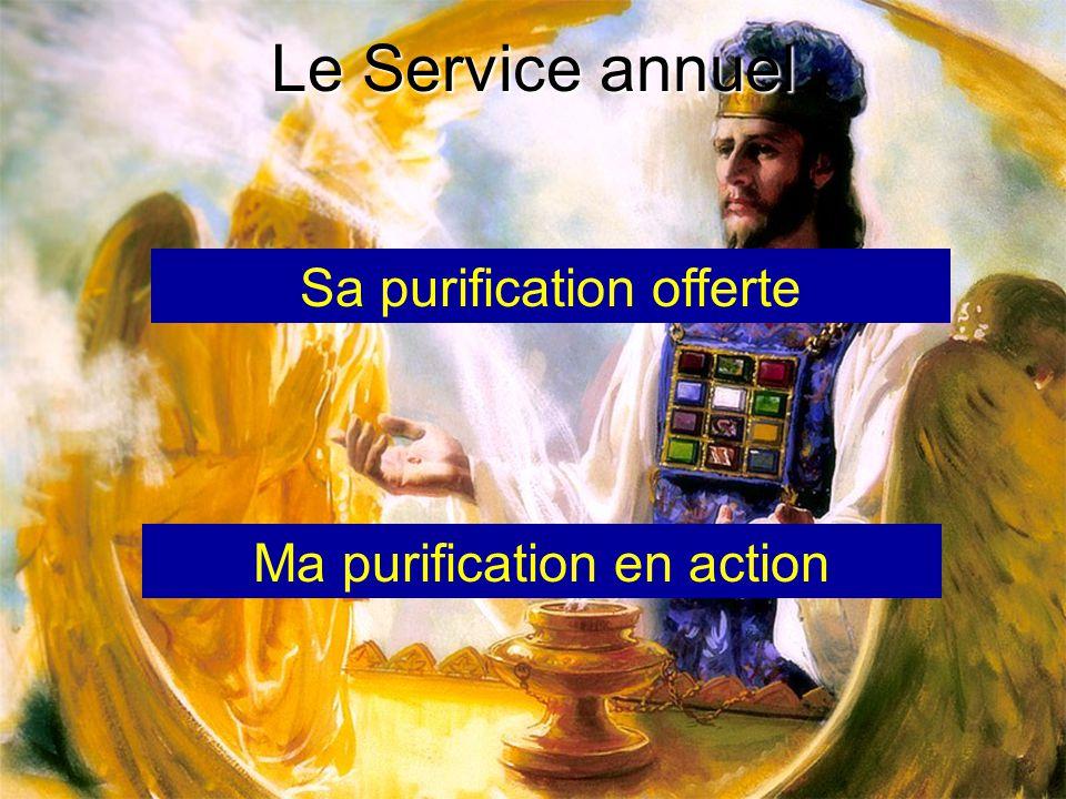 Le Service annuel Sa purification offerte Ma purification en action
