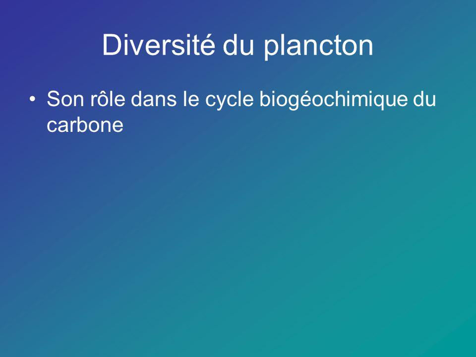 Le plancton est une association biologique complexe qui se maintient entre la surface de leau et une profondeur variable de locéan.