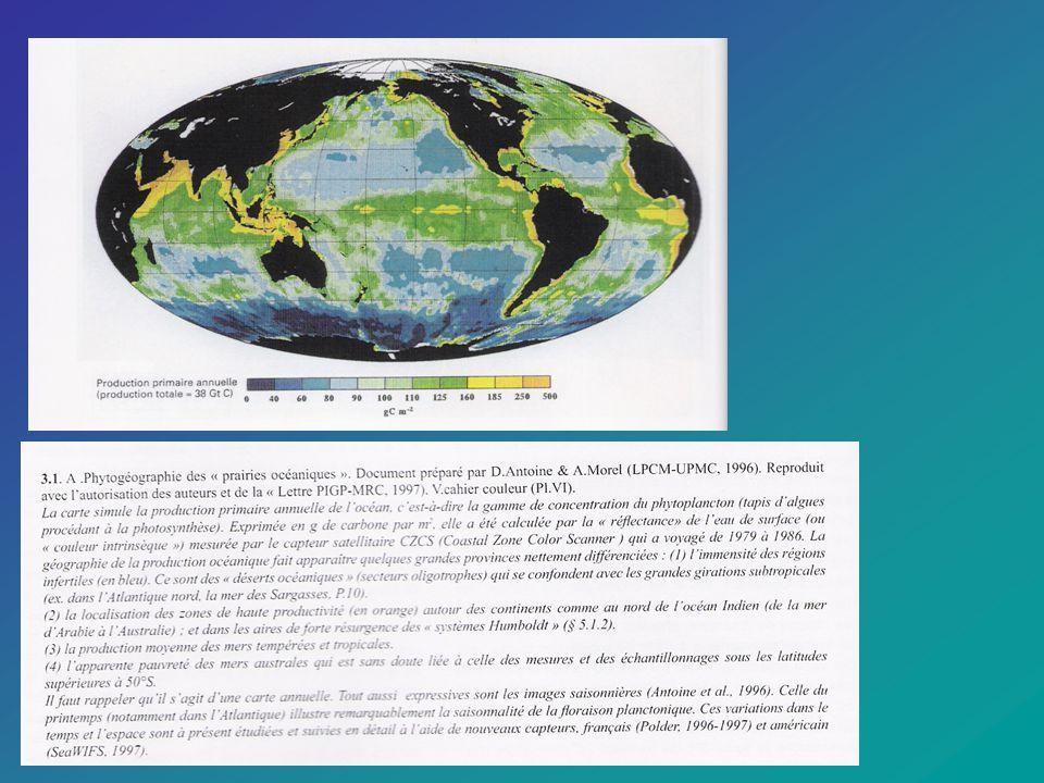 LES RADIOLAIRES – le plancton siliceux actuel Source: Muséum national dhistoire naturelle: http://www.mnhn.fr/mnhn/geo/radiolaires/3planctonsiliceux1.html Par leur diversité de formes et de couleurs, les microorganismes qui pullulent dans le plancton marin offrent toujours de nouveaux sujets d intérêt (curiosité intellectuelle) et d émerveillement (surprise esthétique).