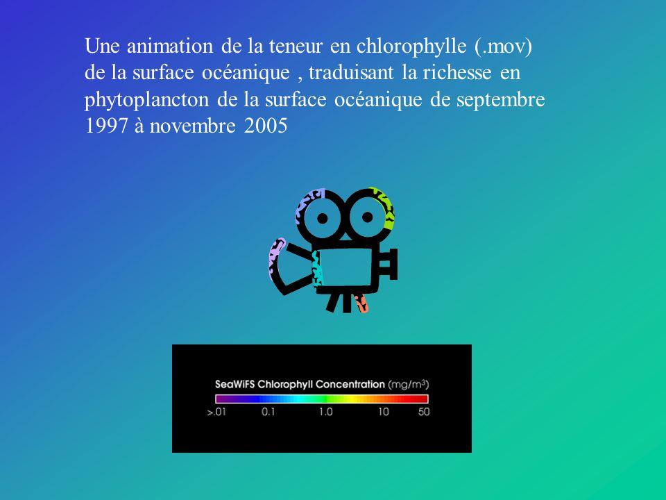 Une animation de la teneur en chlorophylle (.mov) de la surface océanique, traduisant la richesse en phytoplancton de la surface océanique de septembre 1997 à novembre 2005