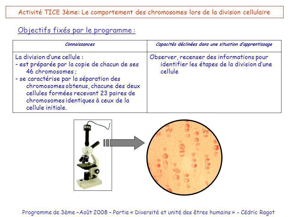 Programme de 3ème –Août 2008 – Partie « Diversité et unité des êtres humains » - Cédric Ragot Activité TICE 3ème: Le comportement des chromosomes lors de la division cellulaire Objectifs fixés par le programme : Observer, recenser des informations pour identifier les étapes de la division dune cellule La division dune cellule : - est préparée par la copie de chacun de ses 46 chromosomes ; - se caractérise par la séparation des chromosomes obtenus, chacune des deux cellules formées recevant 23 paires de chromosomes identiques à ceux de la cellule initiale.