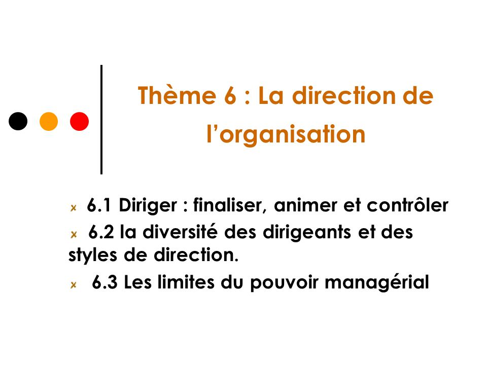 Thème 6 : La direction de lorganisation 6.1 Diriger : finaliser, animer et contrôler 6.2 la diversité des dirigeants et des styles de direction. 6.3 L