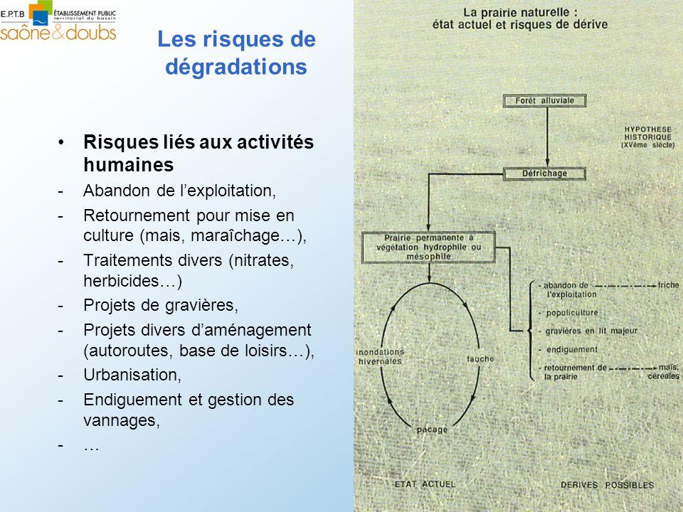 Les risques de dégradations Risques liés aux activités humaines -Abandon de lexploitation, -Retournement pour mise en culture (mais, maraîchage…), -Tr