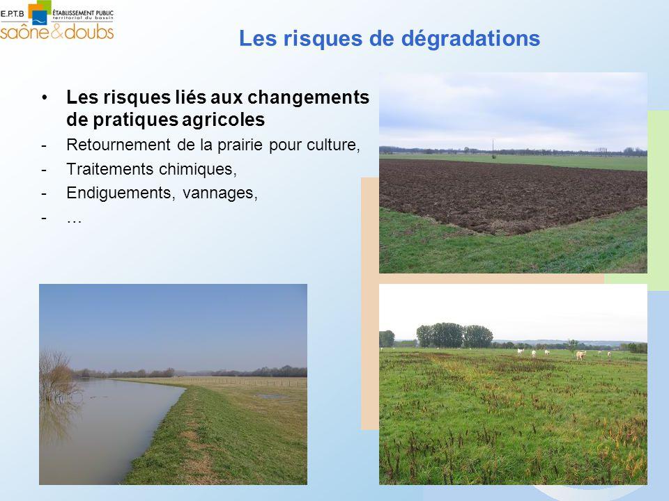 Les risques de dégradations Les risques liés aux changements de pratiques agricoles -Retournement de la prairie pour culture, -Traitements chimiques, -Endiguements, vannages, -…