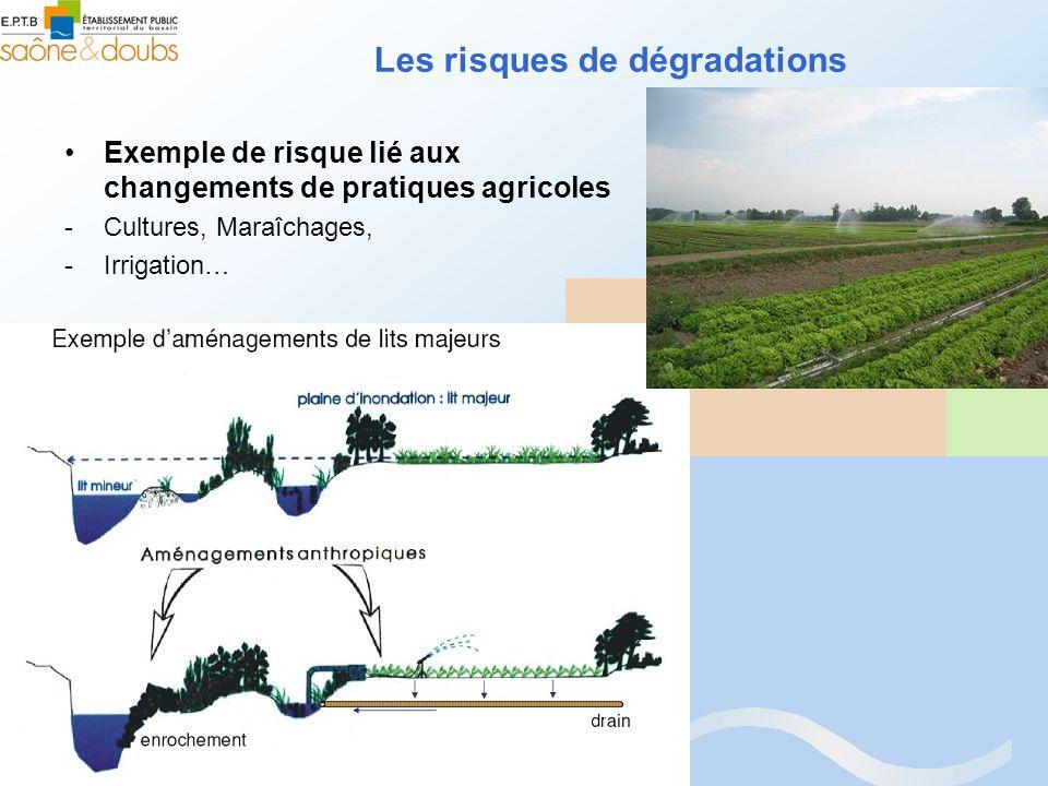 Les risques de dégradations Exemple de risque lié aux changements de pratiques agricoles -Cultures, Maraîchages, -Irrigation…